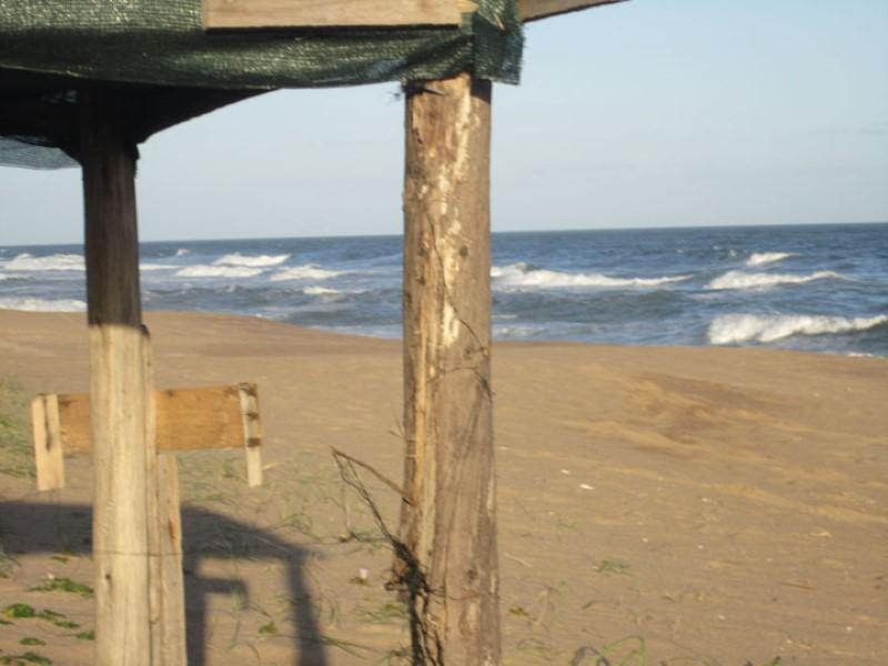 Estudio Chopitea | Chopitea Estates Punta del Este, Alquiler de Casa en    Maldonado