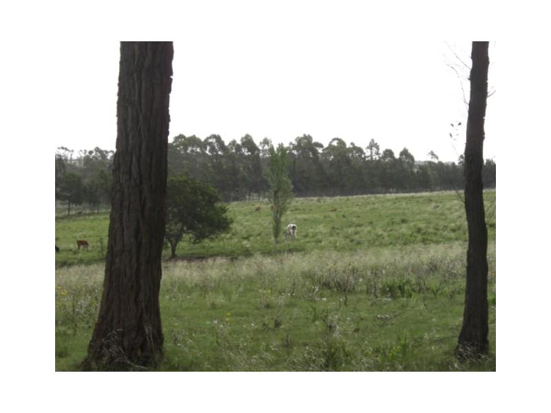 Chopitea Estates Punta del Este, Venta de Lote en    Maldonado