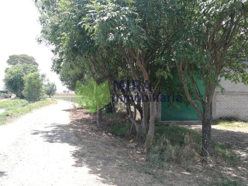 terreno en venta de 5.75 hectáreas, tejaro de los izquierdo