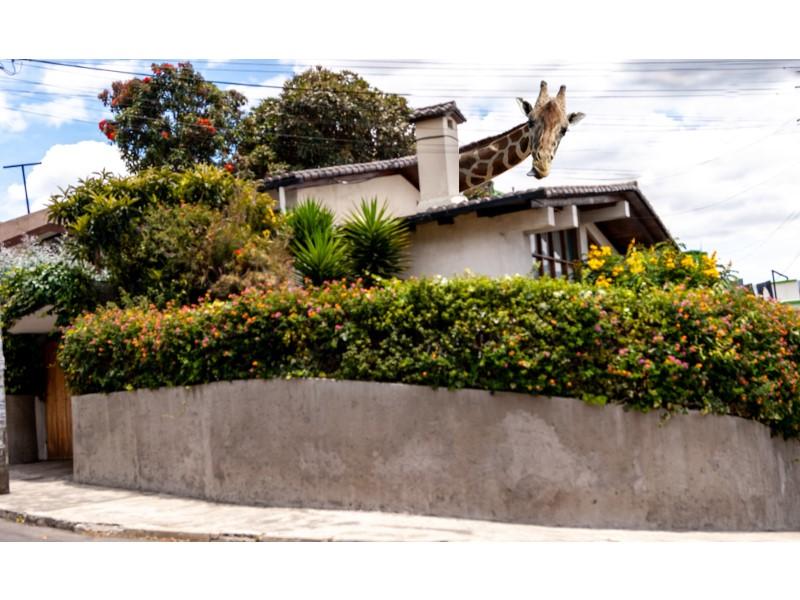 Venta de Casa 4 ambientes en Quito