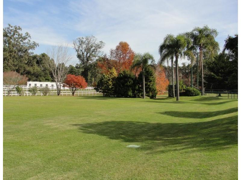 Estudio Chopitea | Chopitea Estates Punta del Este, Alquiler de Casa en    Maldonado Foto7