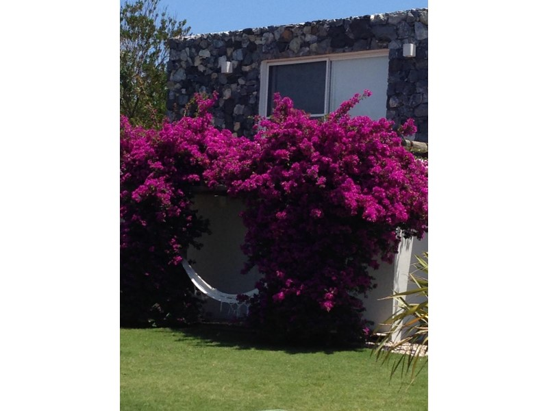 Estudio Chopitea | Chopitea Estates Punta del Este, Alquiler de Casa en    Maldonado Foto8
