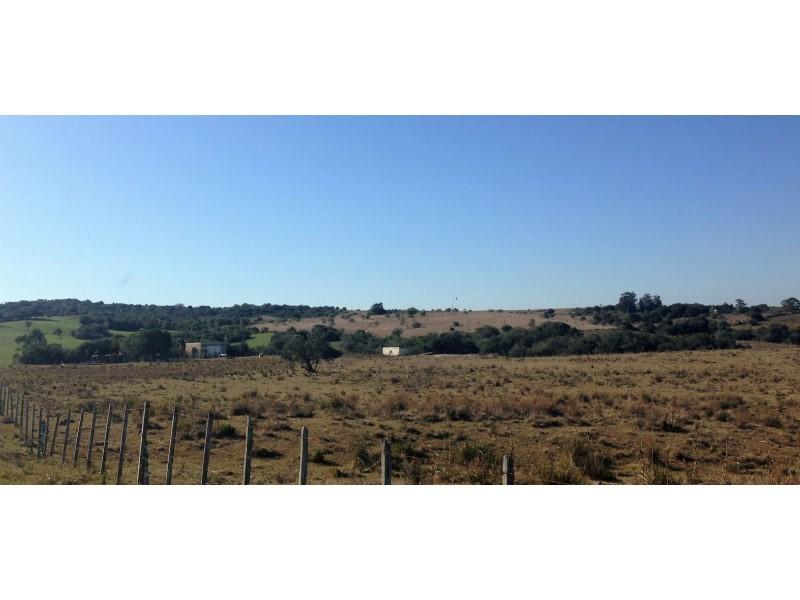 Estudio Chopitea | Chopitea Estates Punta del Este, Venta de Quinta en    Maldonado